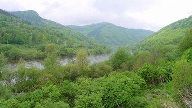 Photo of Lodě opět mohou plout v úseku dolního toku Labe