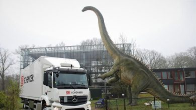 Photo of DB Schenker přepravil kostru dinosaura